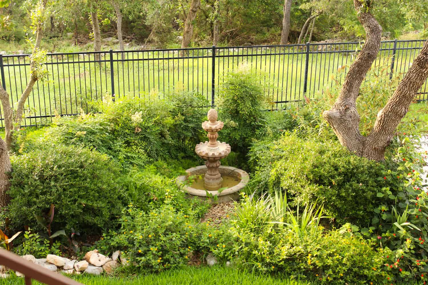 Mix of non-natives and native landscape design with fountain.