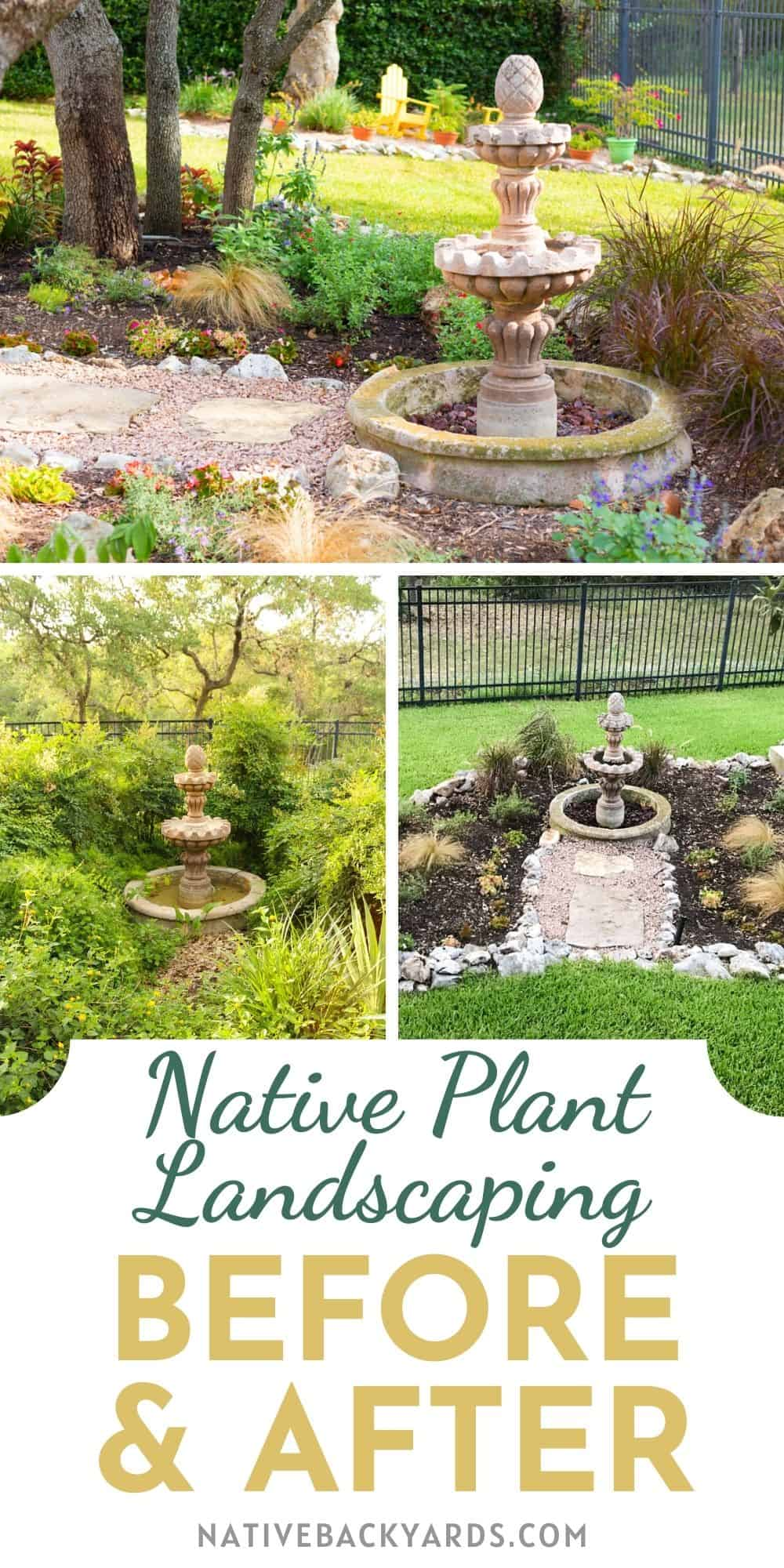 Native plant landscaping before and after