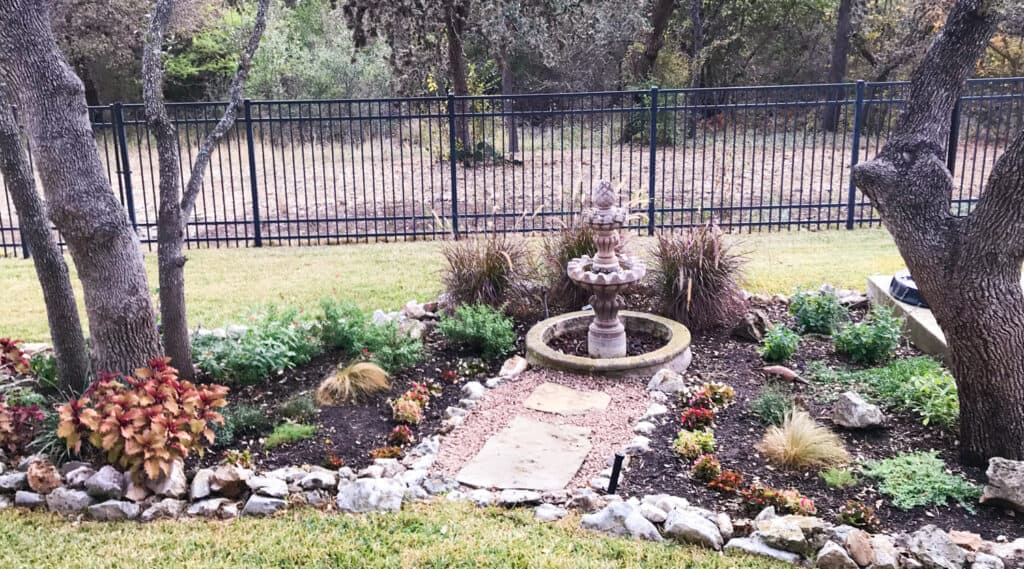 Landscaping with mix of native and non-native plants in Texas yard.