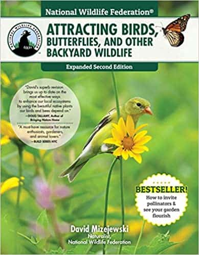 Attracting Bees, Butterflies, and Other Backyard Wildlife