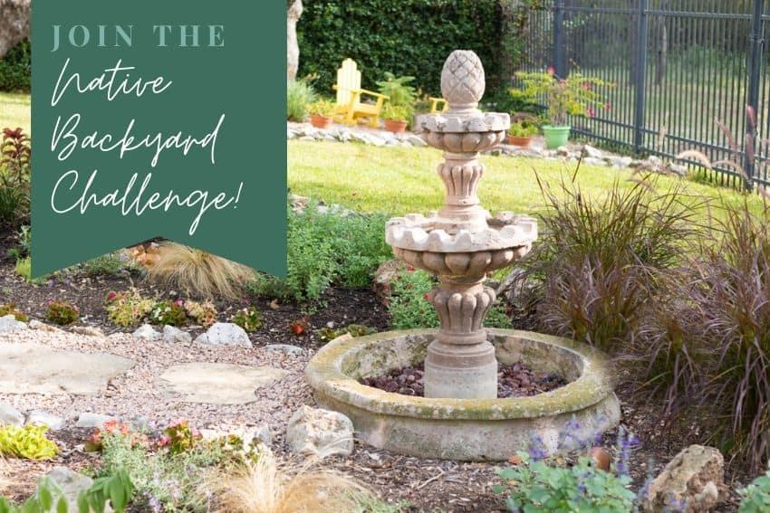 Native Backyard Challenge with Texas Native Plants
