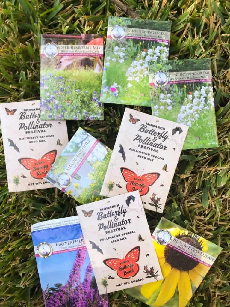 Native wildflower seeds from Native American Seed