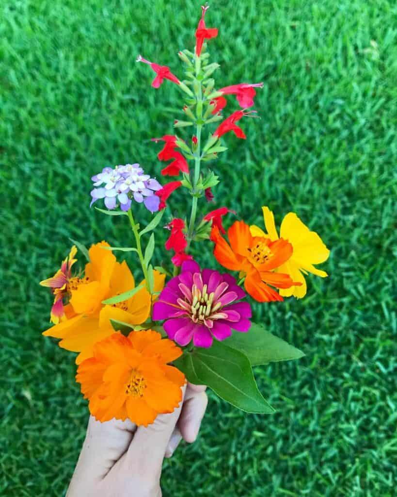 Bouquet of wildflowers.