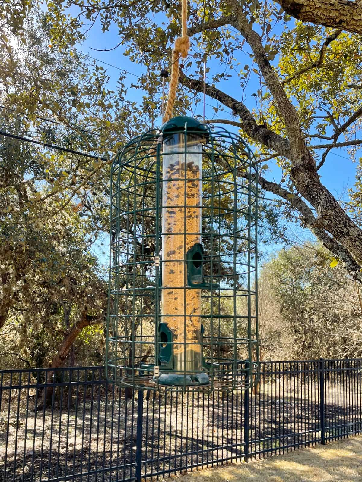 Bird feeder for a Certified Wildlife Habitat