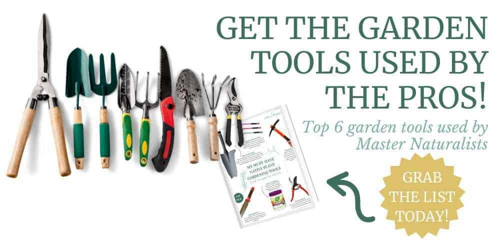Top garden tools used by Master Naturalists